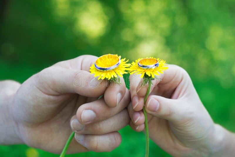 在她的手指的婚戒 免版税库存照片