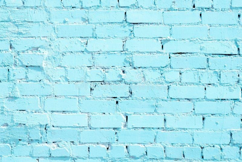 在她的蓝色油漆顶部的砖墙 库存照片