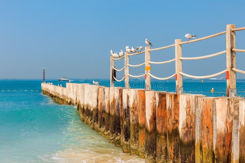 在好的卓美亚奢华酒店集团海滩的全景在迪拜,阿拉伯联合酋长国 阿拉伯联合酋长国著名旅游目的地 清楚的大海波斯语 免版税库存图片