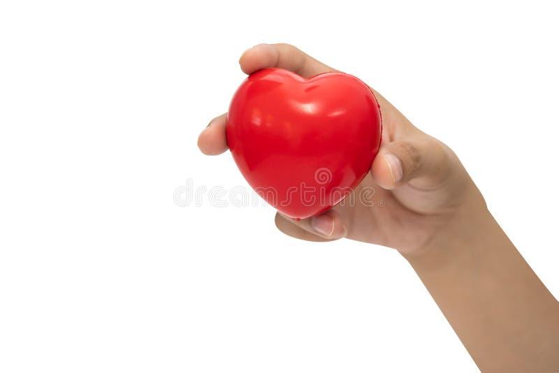 在妇女手上的红心形状 免版税库存照片