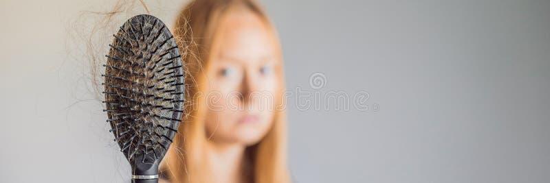 在妇女概念的掉头发 在梳子横幅,长的格式的很多失去的头发 库存照片