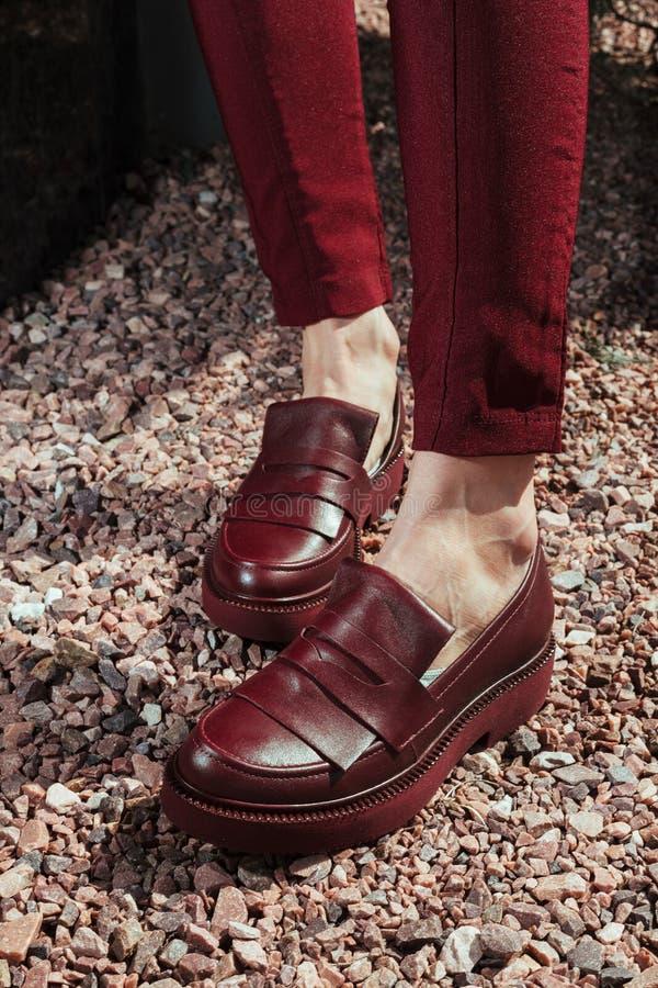 在妇女` s腿的美丽和时髦的妇女` s鞋子 免版税库存照片
