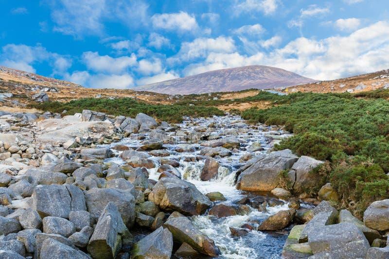 在威克洛山的美好的爱尔兰风景 库存图片