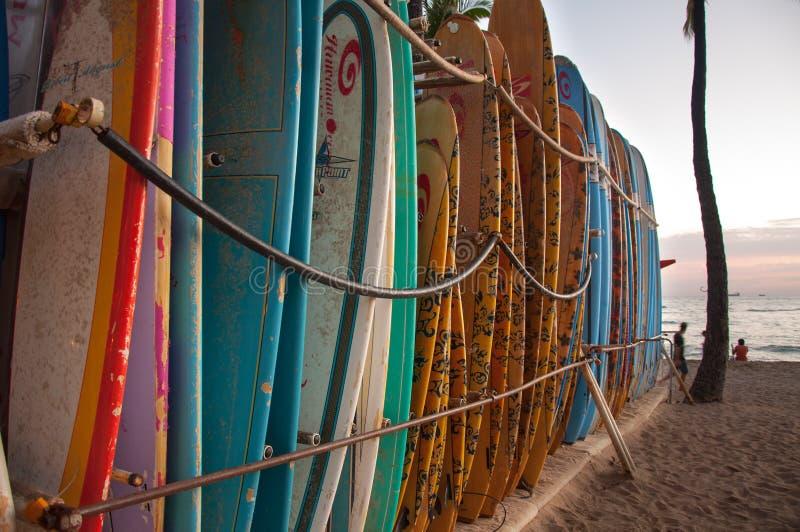 在威基基海滩的水橇板 库存照片