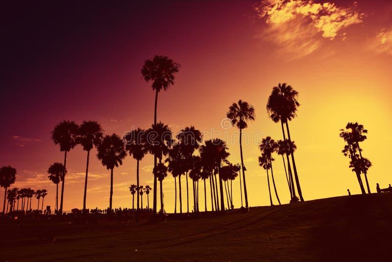 在威尼斯海滩,加利福尼亚,美国的日落 免版税库存图片