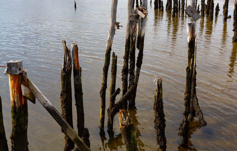 在威斯卡西特缅因的老木打桩废墟 免版税库存图片