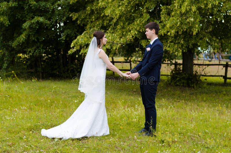 在婚礼礼服的一对美好的已婚夫妇,摆在为一次照片射击在一个白俄罗斯语的村庄 绿色背景 免版税库存图片