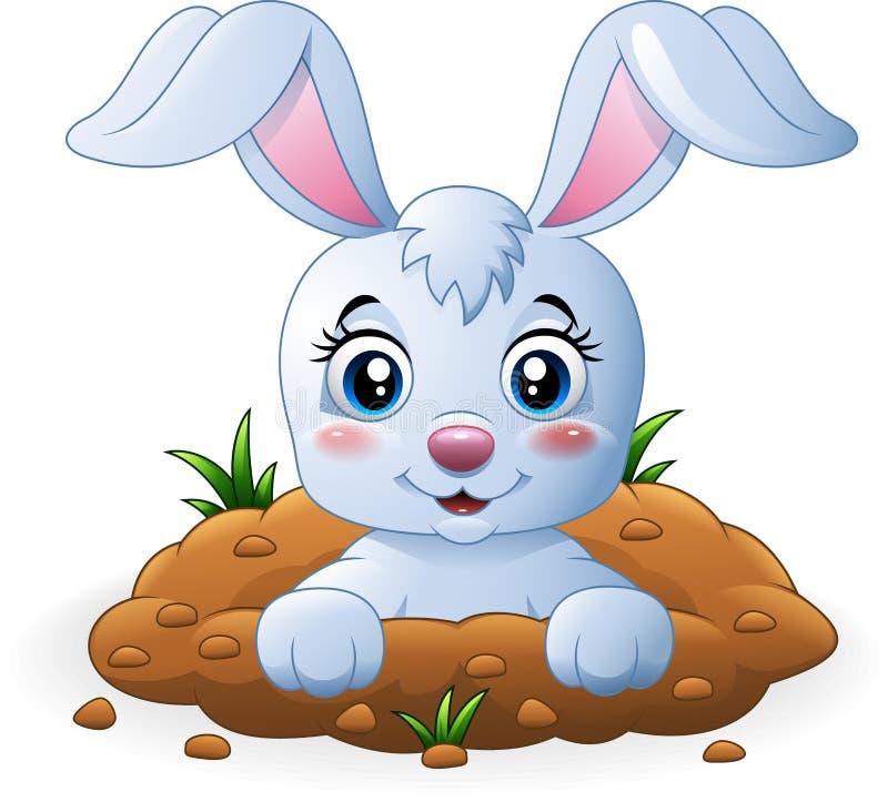 在孔的愉快的兔宝宝动画片 向量例证