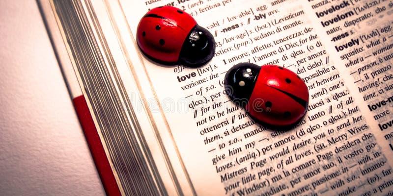 在字典的瓢虫翻译词的从英语到意大利语爱 库存图片