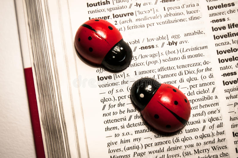 在字典的瓢虫翻译词的从英语到意大利语爱 图库摄影