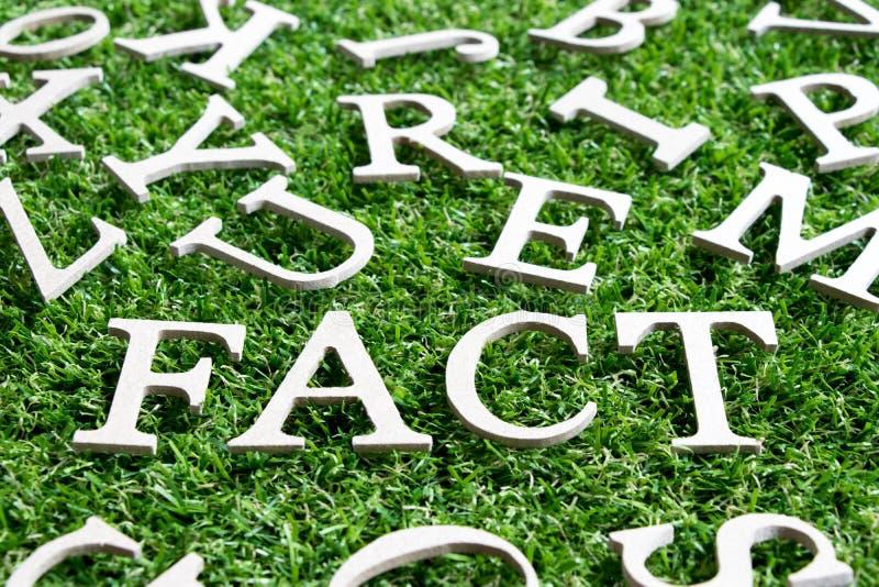 在字词事实的木字母表在人为绿草 库存图片
