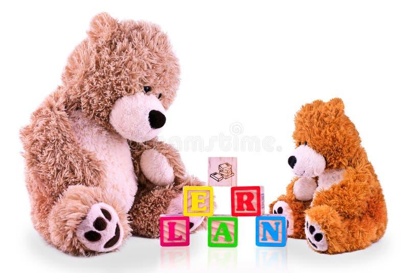 在学会字母表的父母和儿童熊 免版税库存图片