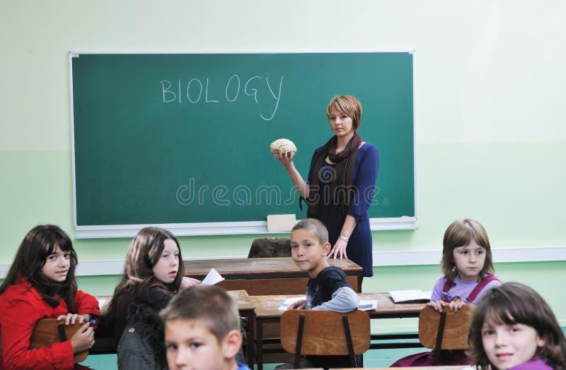 在学校了解生物 库存照片