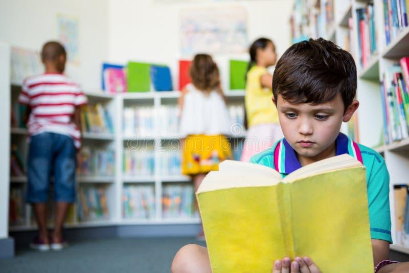 在学校图书馆的基本的男孩阅读书 库存图片