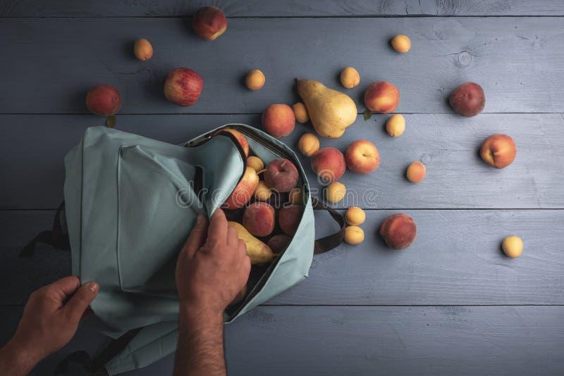 在学校背包的新鲜水果 有机桃子和杏子 免版税库存图片