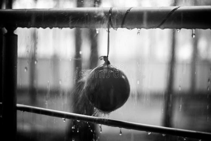 在孩子的小滴迅速增加并且金属化扶手栏杆,夏天雨, bnw照片 免版税库存照片