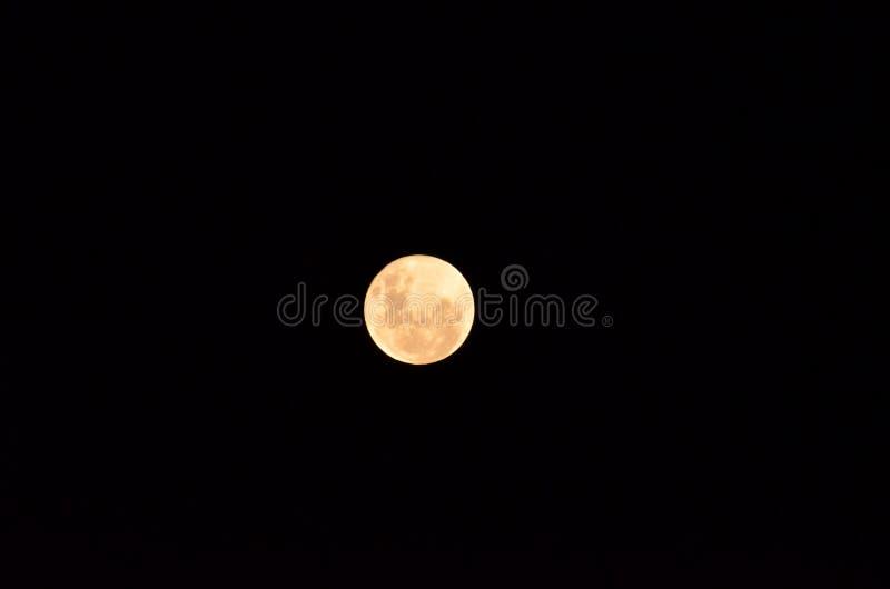 在它的月亮最大的也叫的超级月亮,与清楚的夜表面的月亮 免版税库存照片