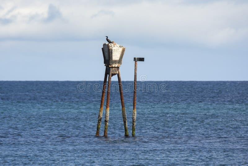在安德内斯海岸的海信号  免版税库存照片