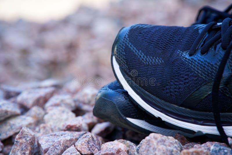 在实践前的跑鞋 足迹跑鞋在公园,特写镜头运动鞋 体育活跃室外生活方式概念 免版税库存图片
