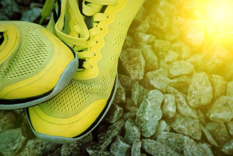 在实践前的跑鞋 鞋子在公园,特写镜头运动鞋 体育活跃室外生活方式概念 免版税库存照片