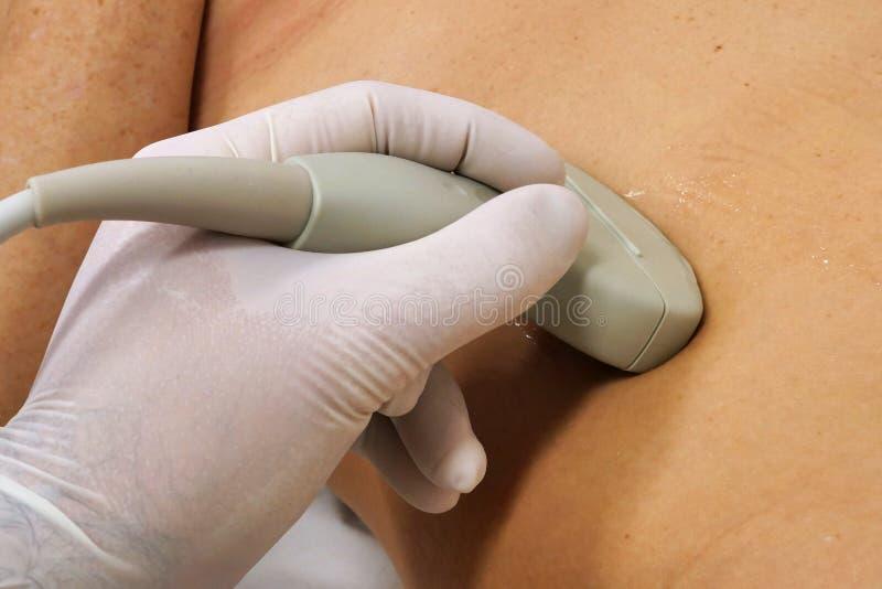 在审查女性腹部的旁边零件左手的胃肠USG凸面探针 免版税库存图片
