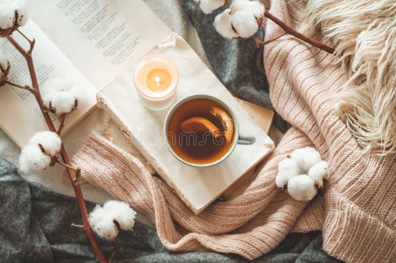 在客厅家庭内部的静物画  毛线衣和茶与一个锥体的在书 读 舒适秋天冬天概念 免版税库存照片