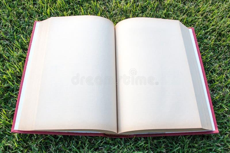 在室外公园的时钟开放空白的书 免版税库存图片
