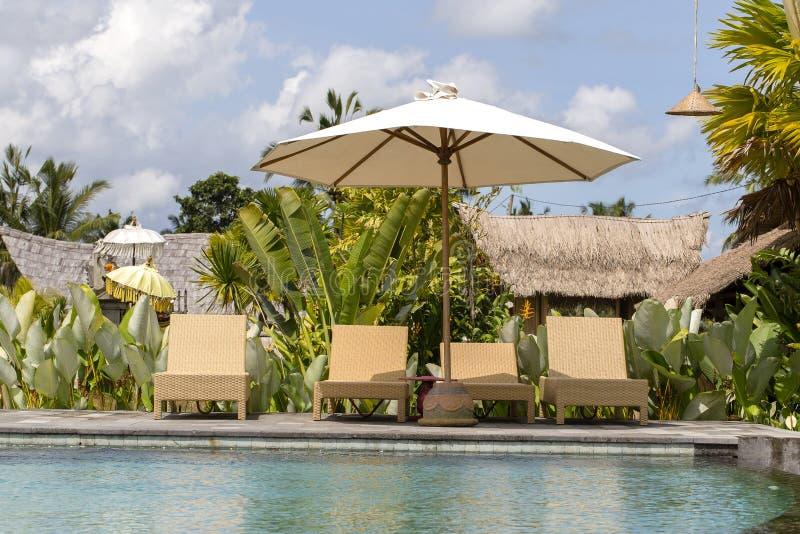在室外游泳池在旅馆里和手段附近的美丽的豪华伞和海滩睡椅与在海岛巴厘岛, Indones上的棕榈树 免版税库存图片