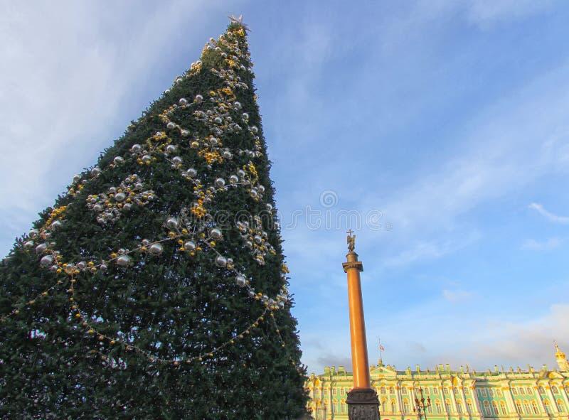 在宫殿正方形,冬天日落的圣彼得堡的树在俄罗斯 免版税库存照片