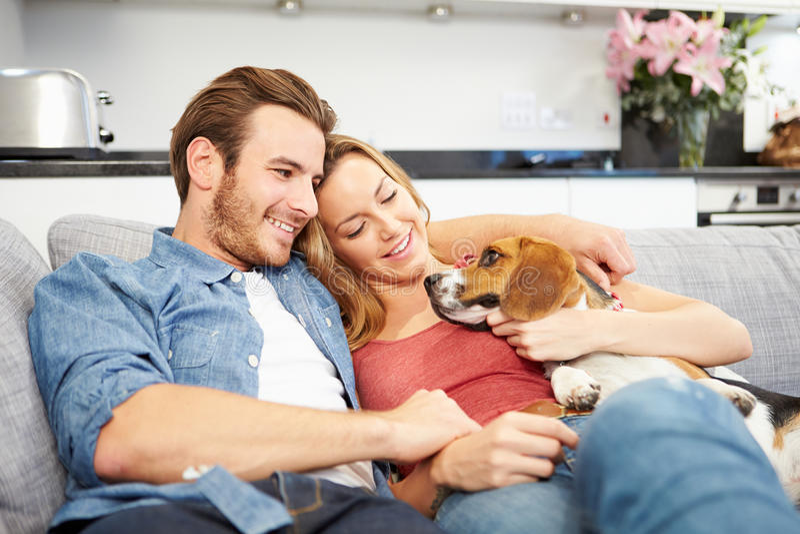 在家使用与爱犬的年轻夫妇 图库摄影