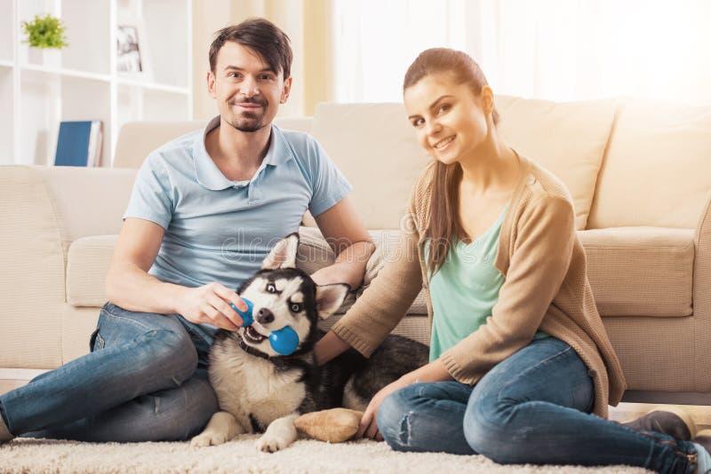 在家使用与逗人喜爱的多壳的小狗的年轻夫妇 免版税库存照片