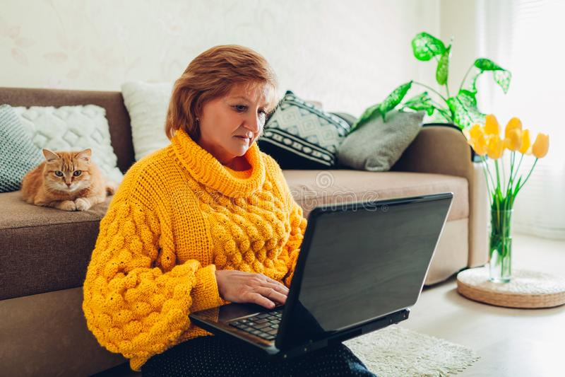 在家使用膝上型计算机的资深妇女放松与猫 学会现代技术的老年人 免版税库存照片