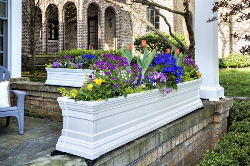 在家前沿的花盆  库存图片
