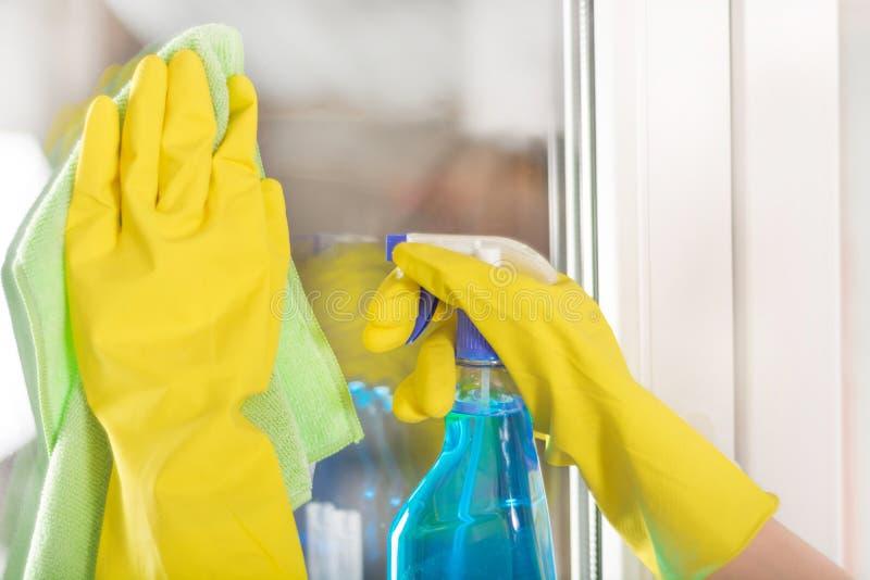 在家清洗窗口的防护手套的妇女手与旧布和清洁剂浪花 免版税库存照片