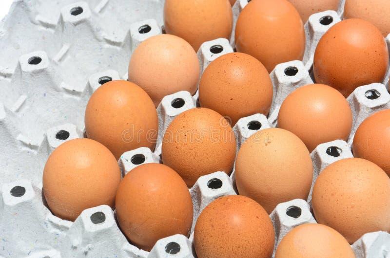在容器盘区的新鲜的鸡蛋 免版税库存照片