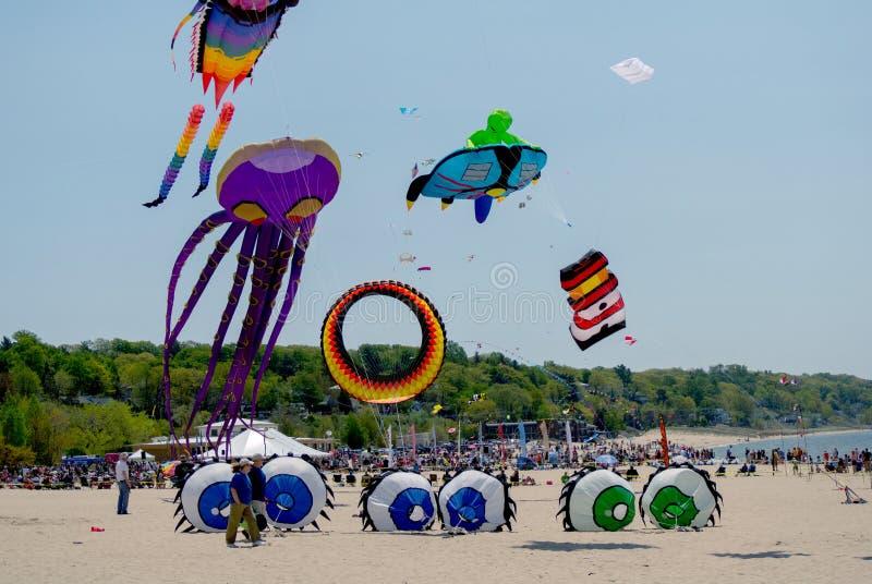 在密执安风筝费斯特的飞行的五颜六色的风筝 图库摄影