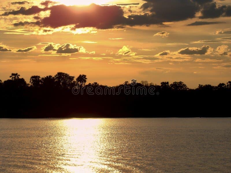 在密林的日落Sambesi河的 免版税库存图片