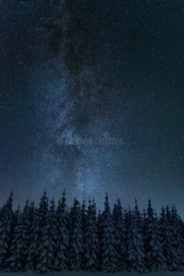 在寒冷冬天夜风景的银河 免版税图库摄影