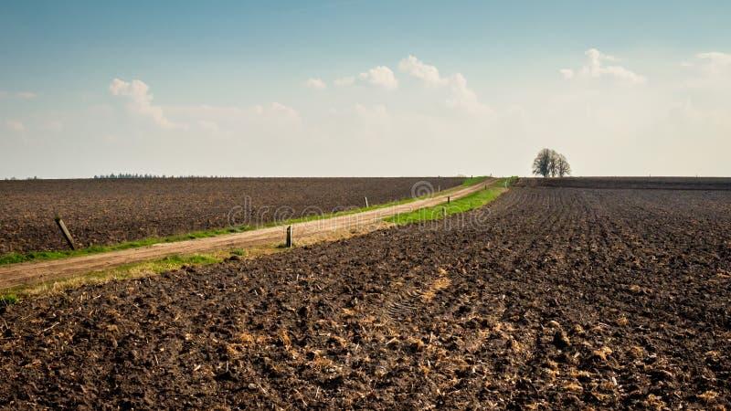 在小室火腿Twente,上艾瑟尔省附近的贫瘠荷兰风景在4月 免版税库存照片