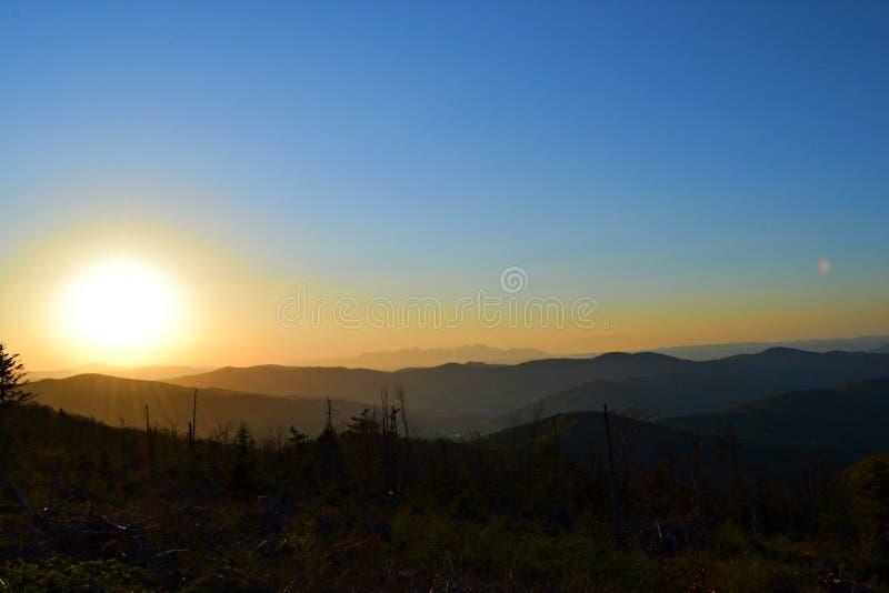 在小山上的美丽的太阳 库存照片