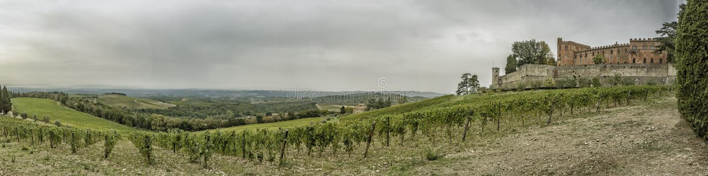在小山与葡萄园和城堡Brolio的全景在Tusc 库存照片