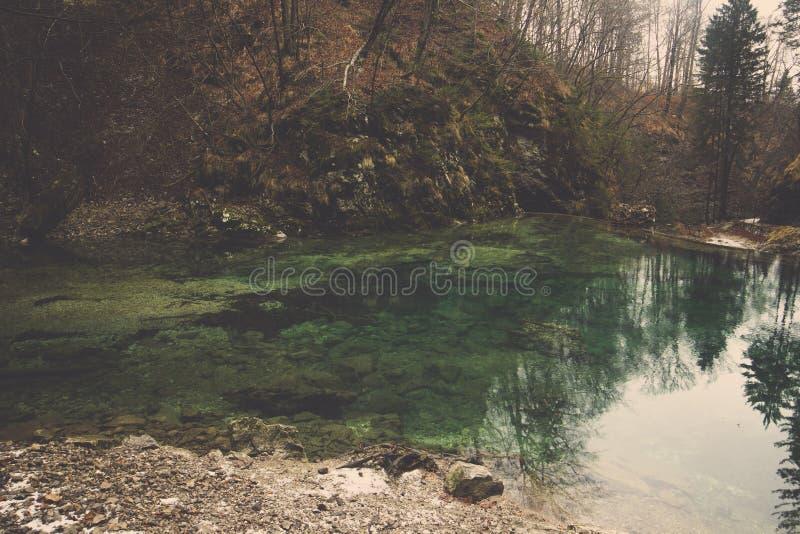 在小山中的鲜绿色水池反射绿色树和森林 图库摄影