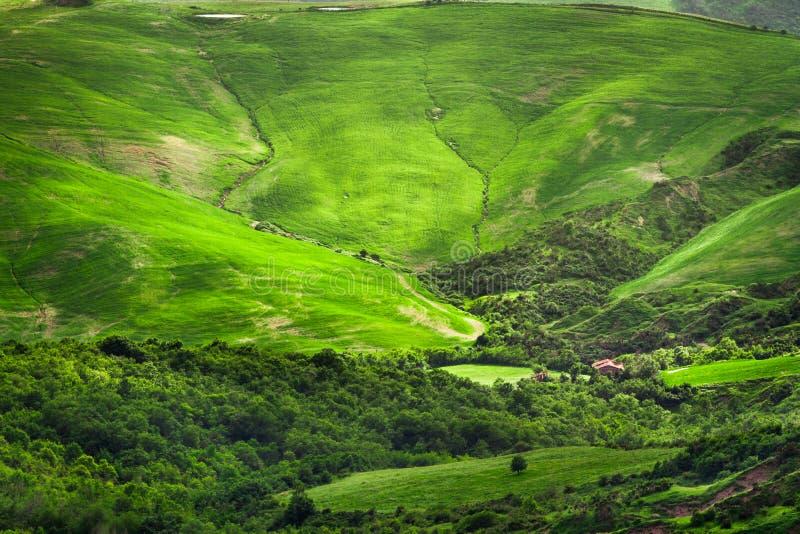 在小山之间的绿色山谷在托斯卡纳 免版税图库摄影