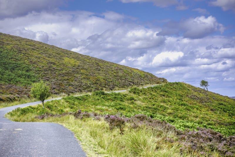 在小山倾斜的农村,易弯曲路 库存图片