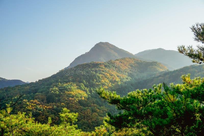 在小山和山的秋天风景 免版税图库摄影