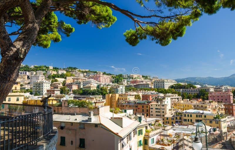 在小山的五颜六色的大厦在热那亚赫诺瓦市区  免版税图库摄影