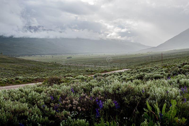 在小山的土路 免版税图库摄影