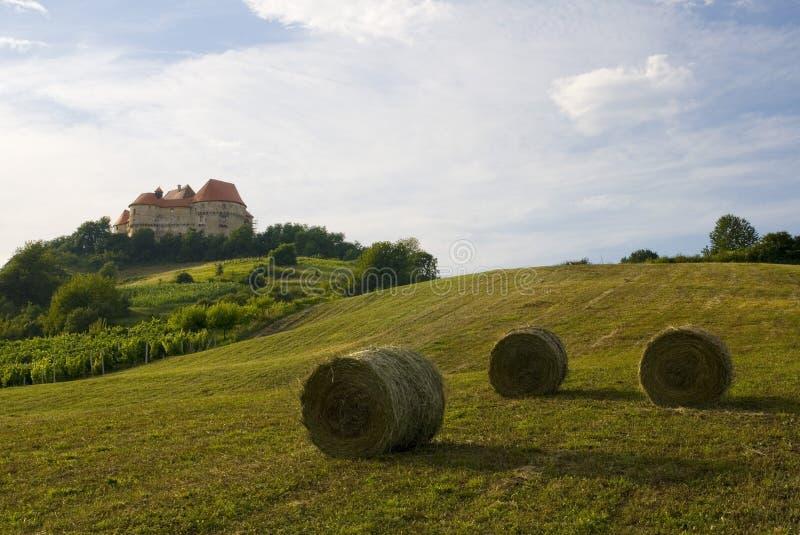 在小山的城堡在夏天 免版税图库摄影
