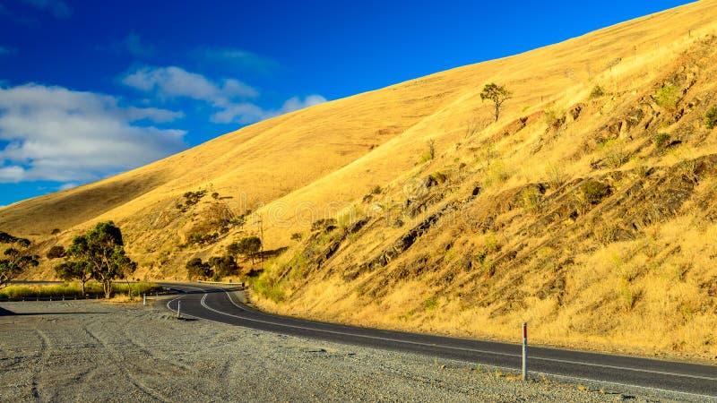 在小山的弯曲的路在日落 免版税库存图片
