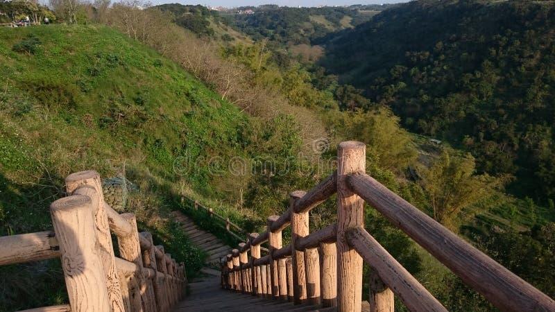在小山的木桥梁 库存图片